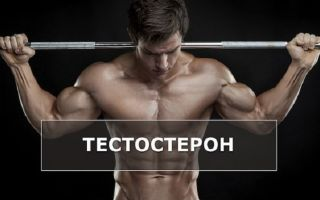 Все о тестостероне