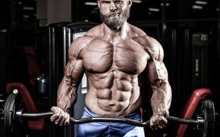 Сколько времени нужно, чтобы нарастить мышечную массу?