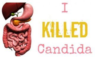 Кандида – грибок или паразит? Это твой друг!