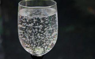 Газированная или негазированная вода – что пить при похудении