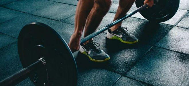 5 самых важных упражнений в тренажерном зале!