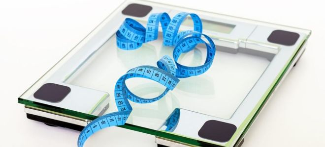 Как выбрать умные весы для измерения жира?