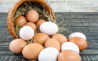 Сколько яиц в день можно съесть без вреда для здоровья