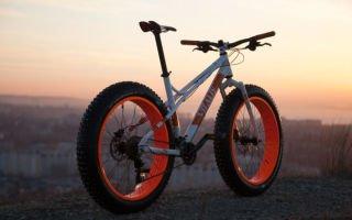 Виды спорта: велосипед