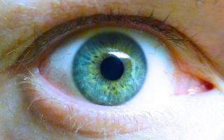 Витамин B3 – для предотвращения и лечения глаукомы