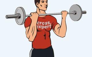 5 лучших упражнений для бицепса: советы и рекомендации