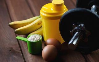 Протеиновый заряд: 5 проверенных рецептов