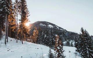Безопасный зимний отдых. Где покататься на лыжах в Австрии?