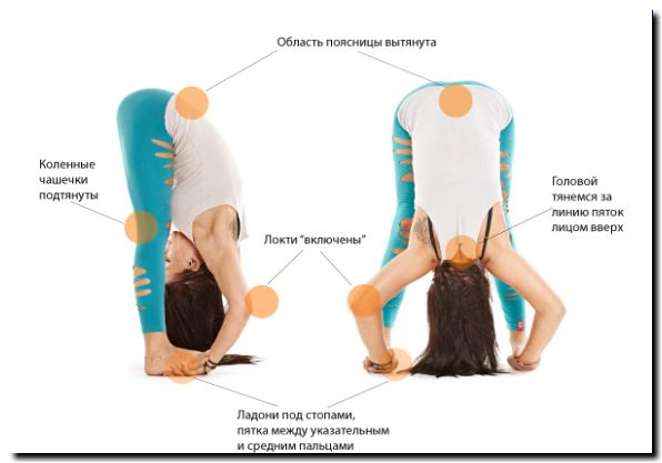 йога поза аиста