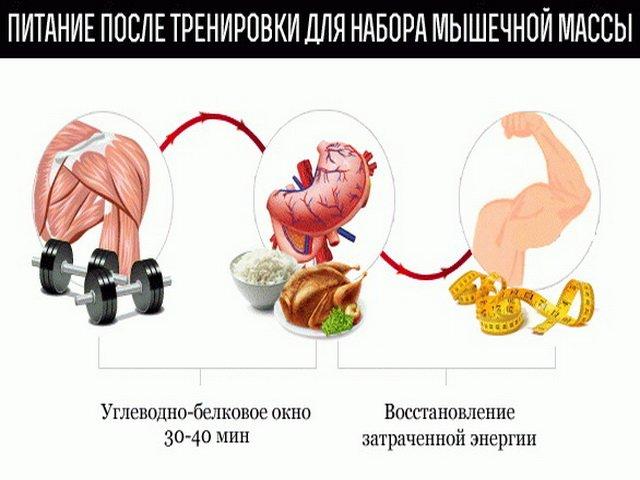 Набор мышечной массы для девушек, фото