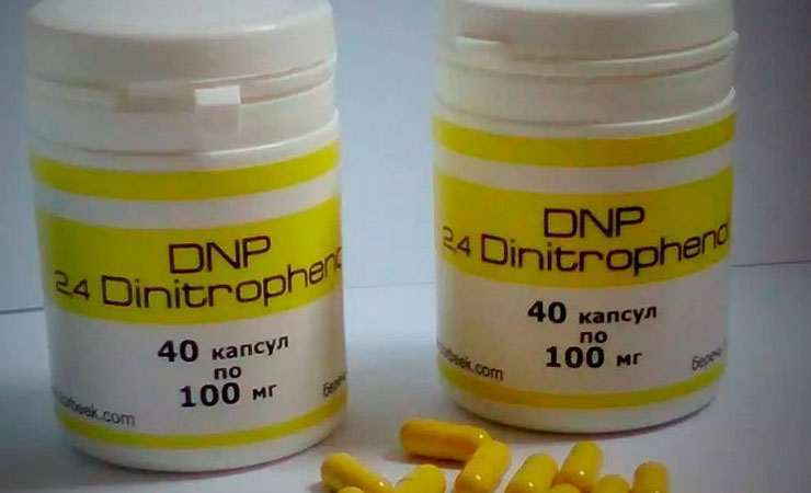 Динитрофенол